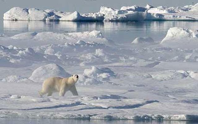 warmer Arctic