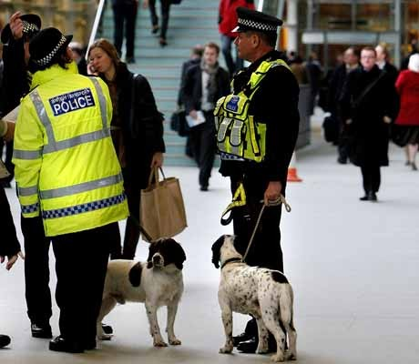 Shortage of sniffer dogs at Olympics?