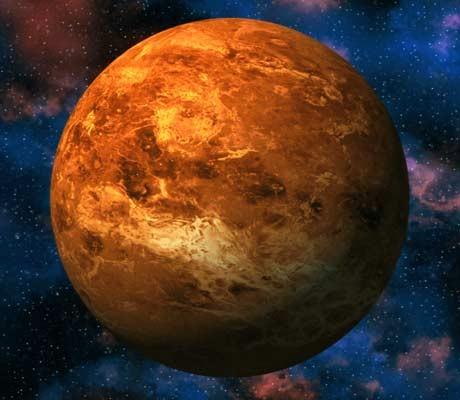 Life 'spotted' on Venus