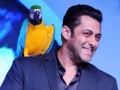 'Bigg Boss' to be Made into a Horror-comedy Film