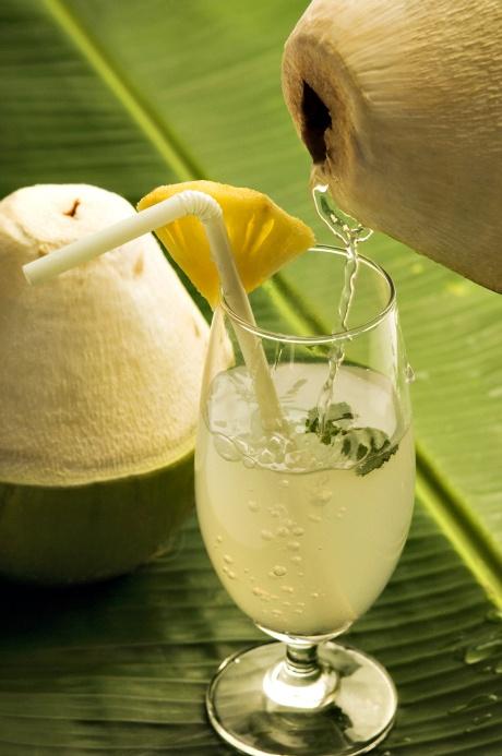 Coconut Cooler