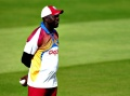 No fallout expected from Windies loss: Gibson