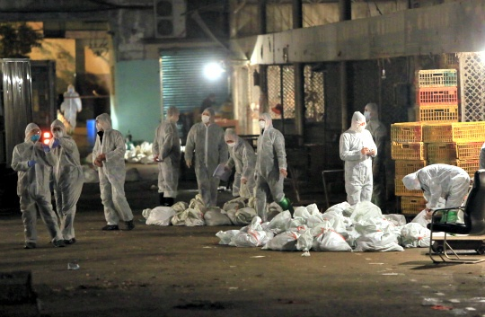 Chinese health workers collect the bags of dead chickens at Huhuai wholesale agricultural market in Shanghai