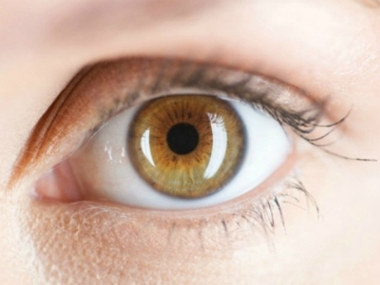 Your Eyes Can Predict Stroke Risk