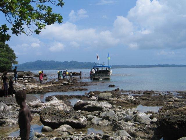 8 0 quake strikes solomon islands sparks pacific tsunami