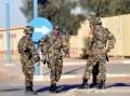 Algeria Faces Flak Over Rescue Tactics