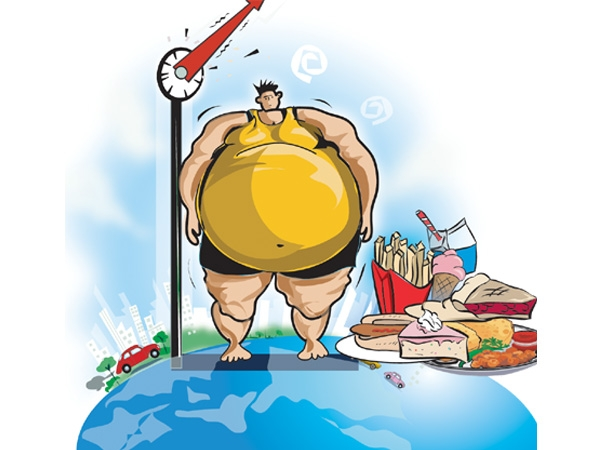junk food and obesity Essays - largest database of quality sample essays and research papers on fast food causes obesity.