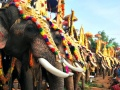 Kodanad: The Land of Elephants