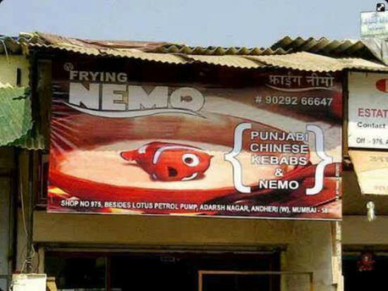 Frying nemo india funny