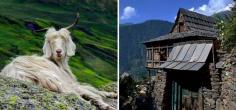 Kinnaur District In Himachal Pradesh Has The Cleanest Air In India According To IIT!