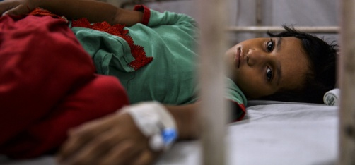 Beware Delhi: New Viral Infections Are Taking Hold Of The Capital With Cross Symptoms Of Dengue, Chikungunya