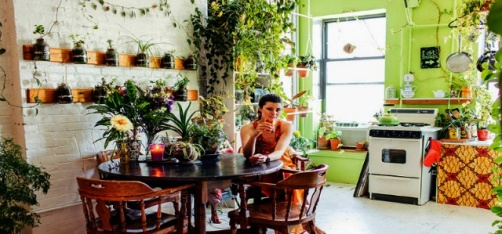 This Woman Planted 500 Plants Inside Her Apartment To Turn It Into An Indoor Jungle!