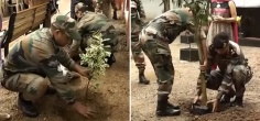 Did You Know Indian Army Also Plants Thousands Of Trees To Make Sure That Our Lives Are Not Just Safe But Also Healthy!