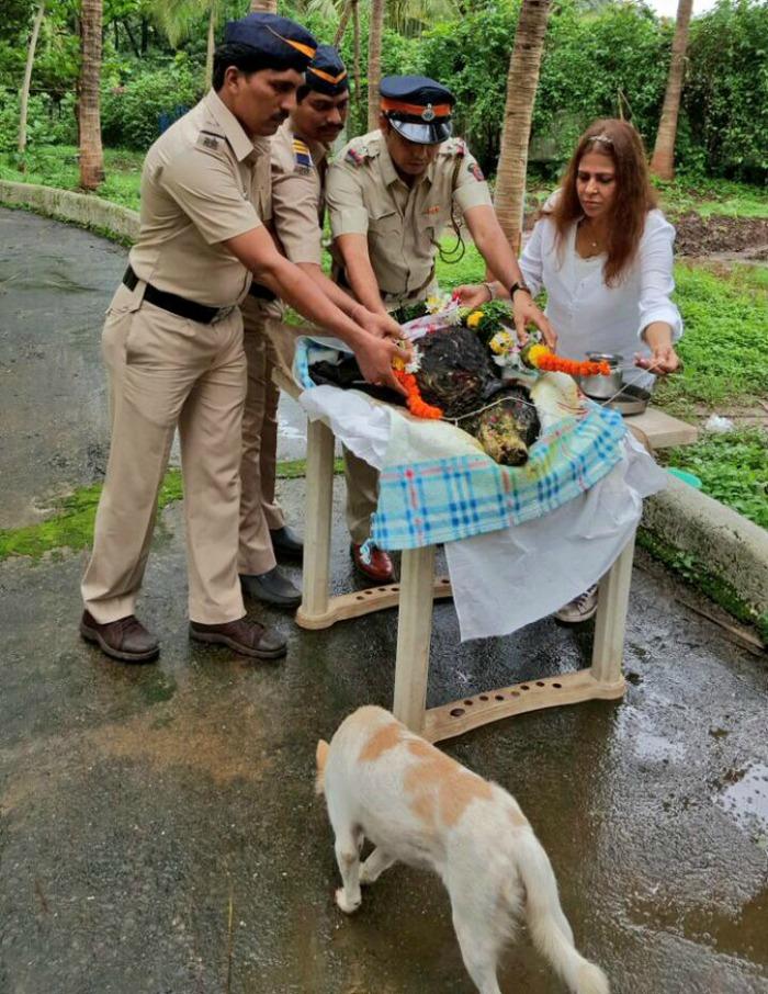 Popular Police Dog Breeds