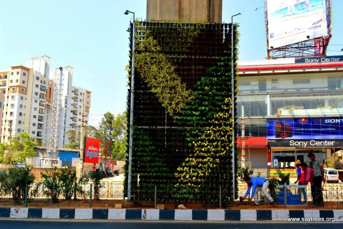 Bengaluru Gets Its 1st Vertical Garden To Curb Pollution It