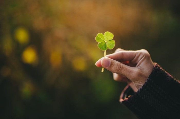 6 Simple Ways To Bring Good Luck Naturally Into Your Life
