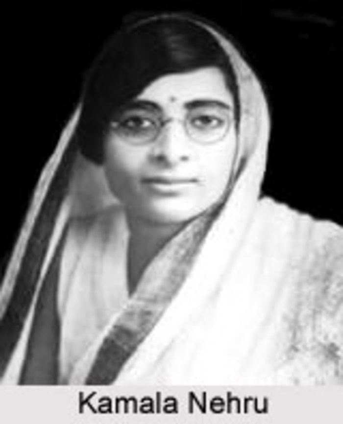 women freedom fighters in hindi langauge Education profiles of india's top 5 women freedom fighters india today what have these 5 famous women freedom fighters of india with a flair for language.