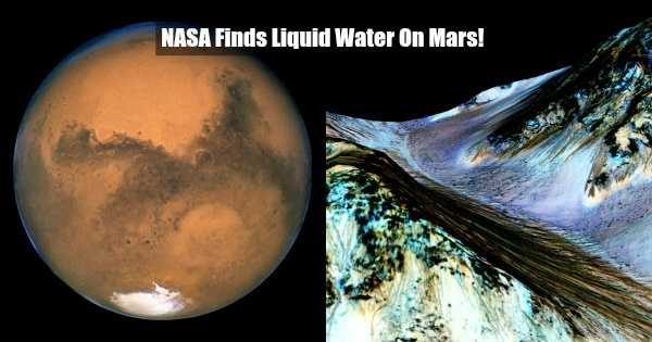 NASA Finds Liquid Water On Mars. Could Life Also Exist On ...