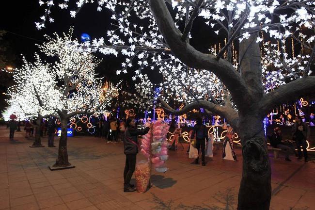 People look at an illuminated tree in Usaquen Park during Festival de Navidad celebrations in Bogota