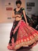 Anupama Dayal saree