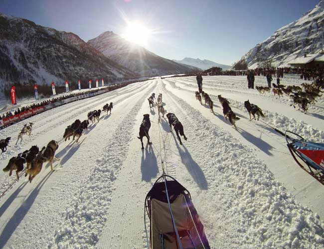 Mushers during the start of the eighth stage of the La Grande Odyssee sled dogs race in Bessans. The race crosses the Alps in France covering over 1000 km in over 11 days.