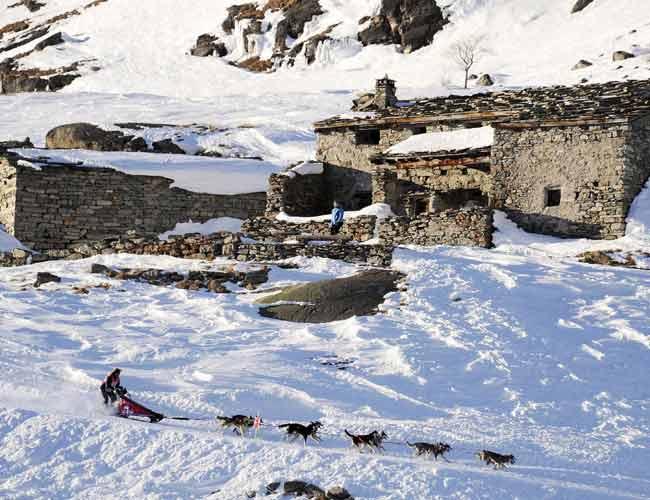 La Grande Odyssee sled dogs race