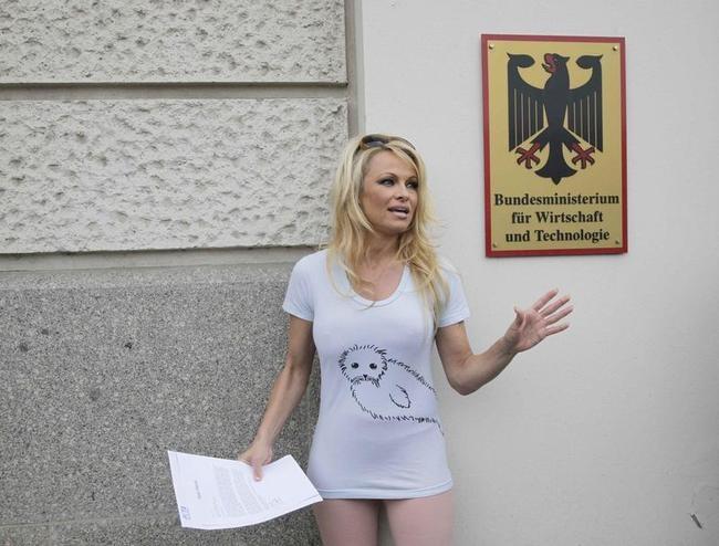 Pamela Anderson bats for seals