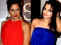 Sameera Reddy and Ameesha Patel