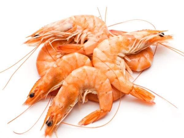 Image result for prawn