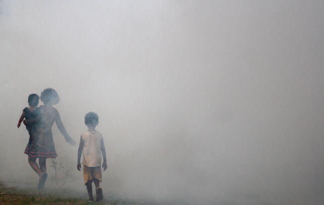 How to: Prevent Dengue & Treat Dengue