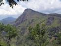 Kumana National Park: