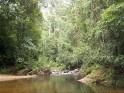 Sinharaja Forest Reserve Sabaragamuwa