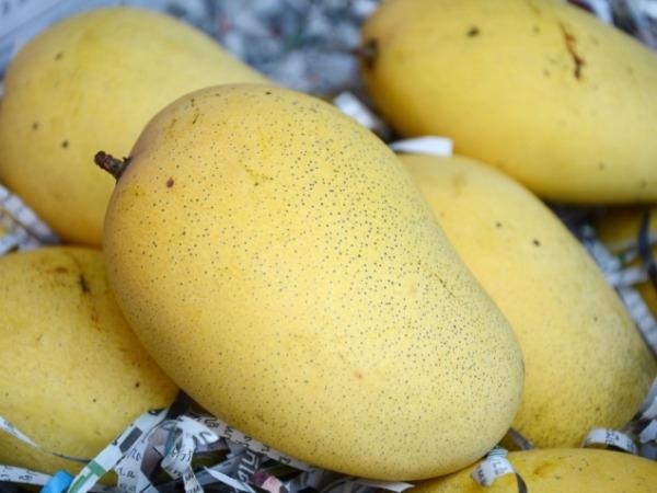 Mango Health Benefits: Healthy Reasons to Eat Mangoes: Cholesterol