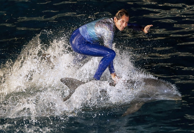 A trainer and dolphins perform on August 11, 2013 at the Marineland animal exhibition park in the French Riviera city of Antibes, southeastern France.