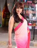 Mrs. Pammi Pyarelal