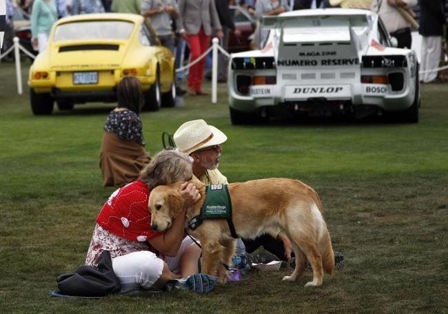 A guest hugs her guide dog during the Concours d