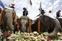 King's Cup Elephant Polo Tournament