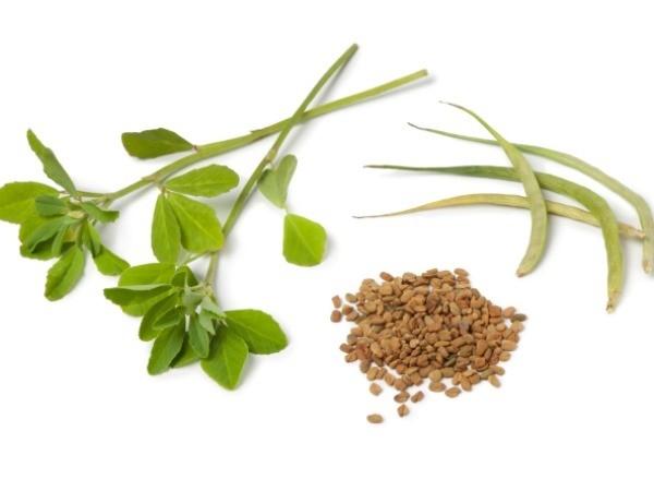 Dandruff Treatment: 30 Ways to Get Rid of Dandruff Fenugreek treatment