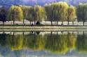 Scenes From Kashmir