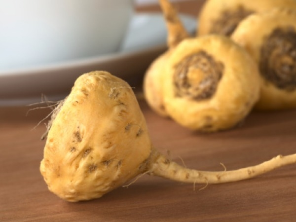 Male Fertility Foods to Increase Sperm Count Ginseng