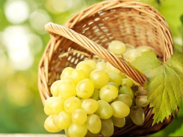Grapes, raisins, prunes