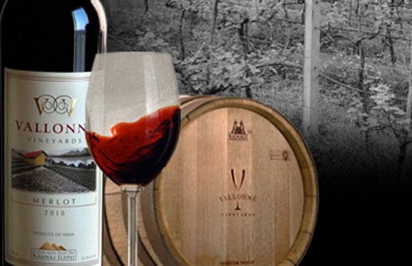 Vallonné Vineyards Sauvignon Blanc 2011