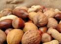 Honey-Nut Oatmeal