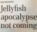 New Research: Jellyfish apocalypse not coming