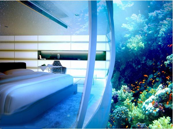 As you check into one of the 21 underwater hotel rooms, a special lighting system is the first flash that gives you a glimpse of what lies ahead. Adjacent to the underwater dive centre and bar, the soundproof rooms provide an intimate connect with the surrounding coral reef, and flora and fauna. Curtains with different levels of transparency help maintain the privacy when necessary.