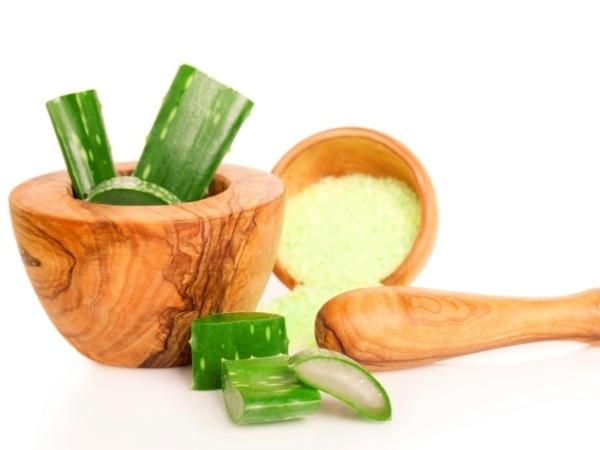 Dry Skin: 21 Herbs and Herbal Oils Good Dry Skin : Aloe Vera