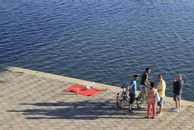 Scenic Shores of Danube River