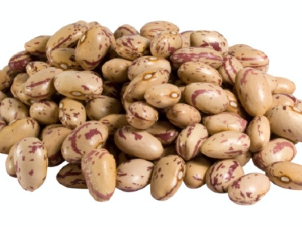 Uric Acid: 20 Foods to Keep Your Uric Acid at Normal Levels : Pinto Beans