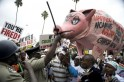 Spilled Cow Blood Colors Kenya MP Pay Protest