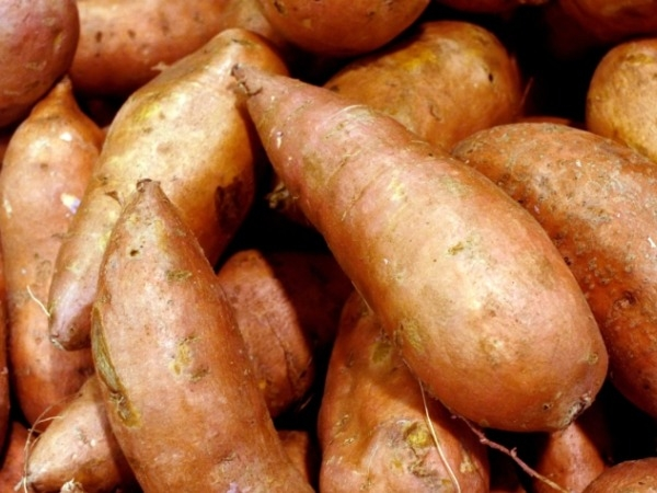 Best Muscle Building Foods : Sweet Potato